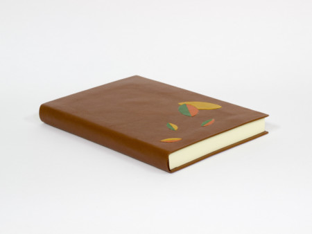 Brown leather book with fabric case