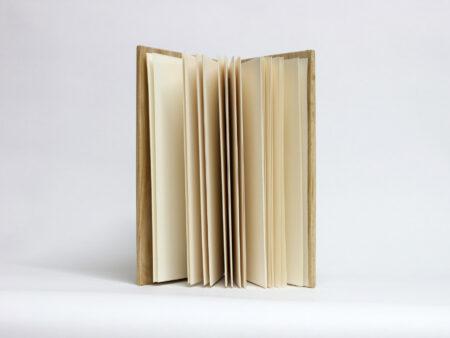 Llibre de fusta de faig