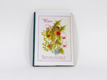 Vista de la portada del libro Winter